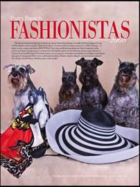 dog models